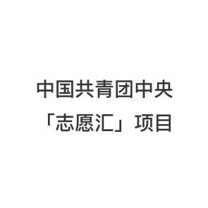 中国共青团中心「自愿汇」项目